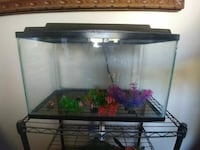 clear glass pet tank Edmonton, T5L 0Y5