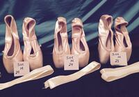 Ballet Pointe Shoes  Lynchburg