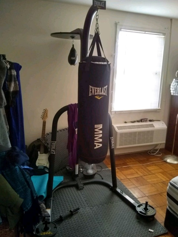 Everlast Speed and Punching bag COMBO