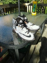 LeBron James Nike volume 13 super hard to find Tualatin, 97062