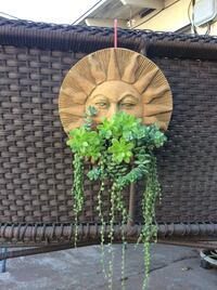 Succulent Hanging planters for $30.00 Each /  3 different planters Santa Maria, 93455