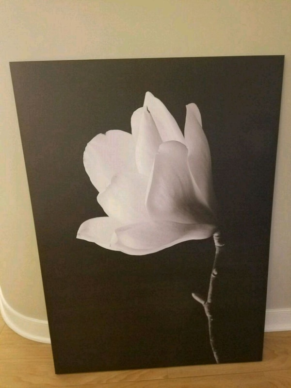 Black and white canvas, large