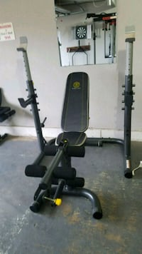 Black and grey goldsgym bench and rack Norman, 73069