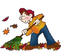 fall clean up  Burr Ridge