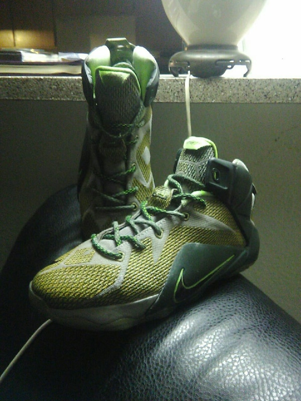 cf8606cb70c6f Used Nike LeBrons size 7 for sale in Las Vegas - letgo