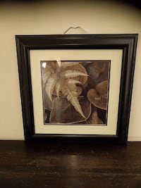 Decorative photo in 20 inch frame Columbia, 29210