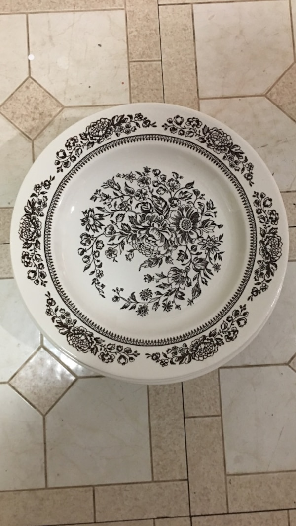 """8 plates 10"""" round white and brown Cavalier ironstone plate"""
