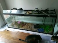GLASS AQUARIUM 6 feet long, 155 gallons - $300 OBO Mississauga, L4Z 1J2