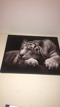 black and white tiger painting Manassas Park, 20111