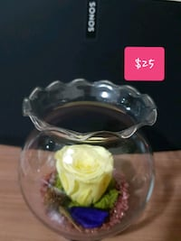 Yellow real preserved rose in clear glass jar  Toronto, M6A 1X2