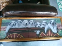 white and brown wooden framed painting of puppies Albuquerque, 87120