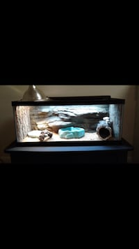 Fully Decorated Reptile Enclosure with Stand West Palm Beach, 33406