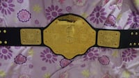 Wwe belt and money in the bank briefcase  Mississauga, L5V 1G1