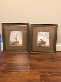 2 glass framed prints (set of 2)