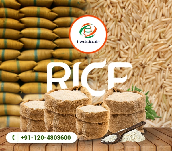 Buy Bulk Basmati Rice Online Directly From Rice Millers