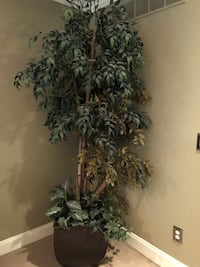 """Large Artificial Plant - height 88"""" Far Hills, 07931"""