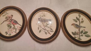 ANATOLE MARTIN SIGNED BIRD PRINTS IN BLACK OVAL FRAMES