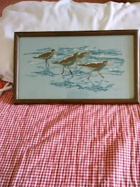 Crossstitch of sandpipers Albany, 12205
