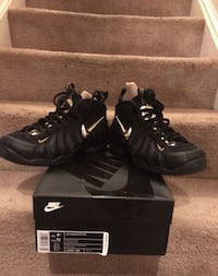 Nike Foamposite Pro District Heights, 20747