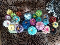 Individually hand-painted pine cone flowers Fargo, 58103