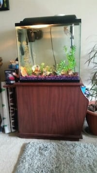 Fully equipped fish tank with fish! complete!  London, N5Y 4L1