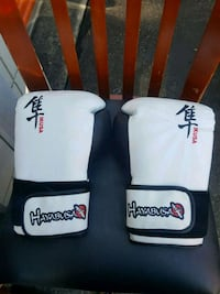 Ikusa Boxing Gloves Burnaby