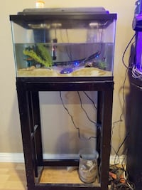 rectangular clear glass fish tank with stand