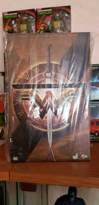 Hot toys Wonder woman training version  Almese, 10040