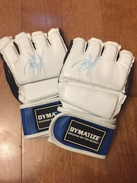 UFC Brock Lesnar sign gloves  Waterdown, L8B 0H1