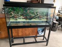 Fish tank with stand and light Oakville, L6H 4V7