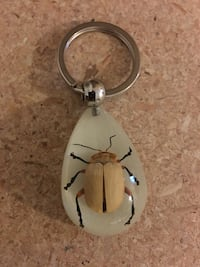 brown June beetle stone keychain Red Deer, T4R 2H5