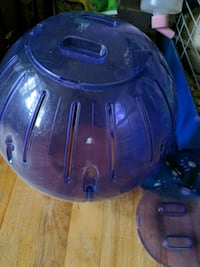 Small animal exercise ball. Used once. Windsor, N8Y 3Z3