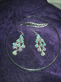 group earnings necklace and feather pin Billings, 59101