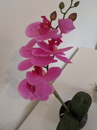 Structube artificial realistic orchid Toronto