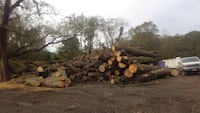 Custom Sawmilling  Rockville, 20855