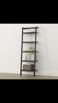leaning ladder book shelves Toronto, M3C 1J9
