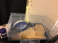 cage, wheel, house, food and water bowl 2253 mi