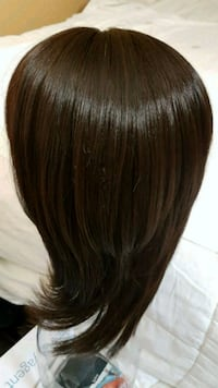 a wig and 2 sets extentions St. Thomas, N5P 1T1