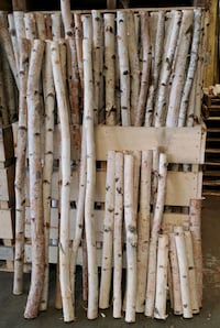 Birch pieces
