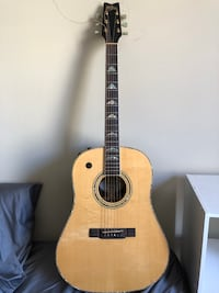 Washburn Acoustic Electric Guitar Chicago, 60610