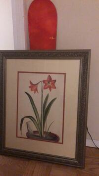 Red and white petaled flower painting