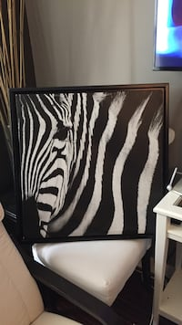 black and white zebra painting with brown picture frame