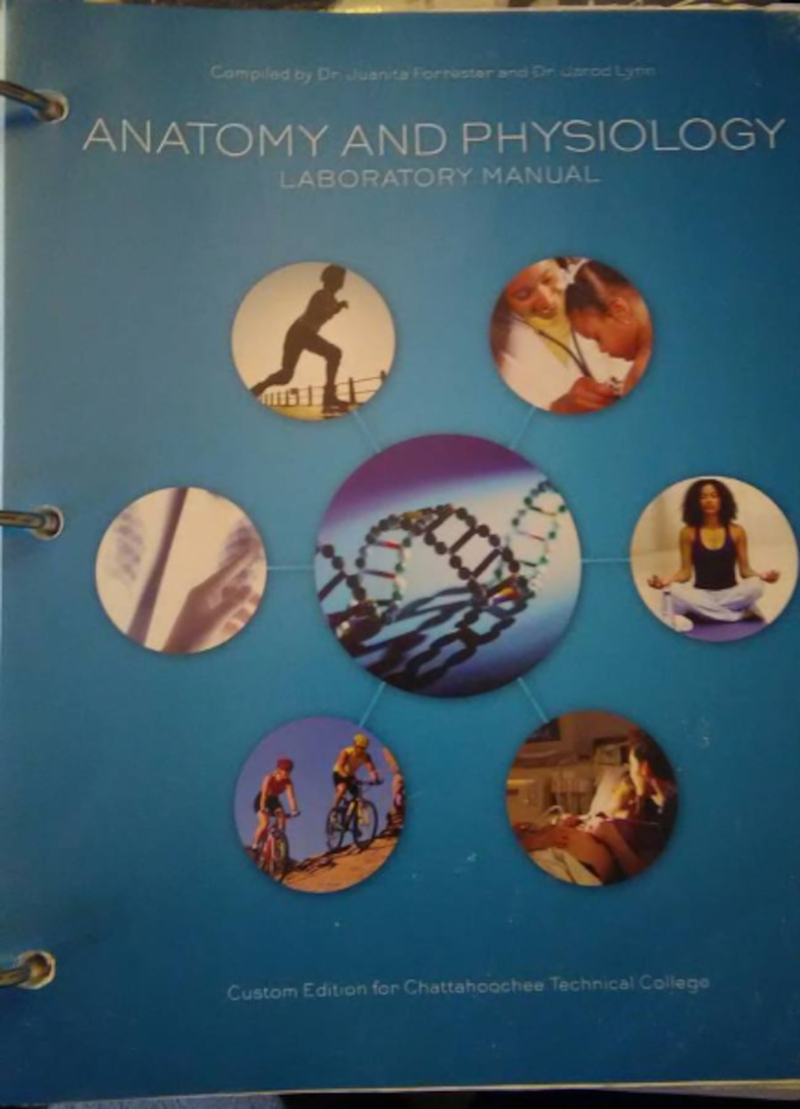 Used Anatomy and Physiology- Laboratory Manual in Marietta