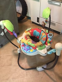 Fisher Price Bouncer  Fitchburg, 01420
