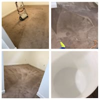 Carpet cleaning services Washington