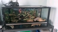 39x18x18 terrarium with tile floor