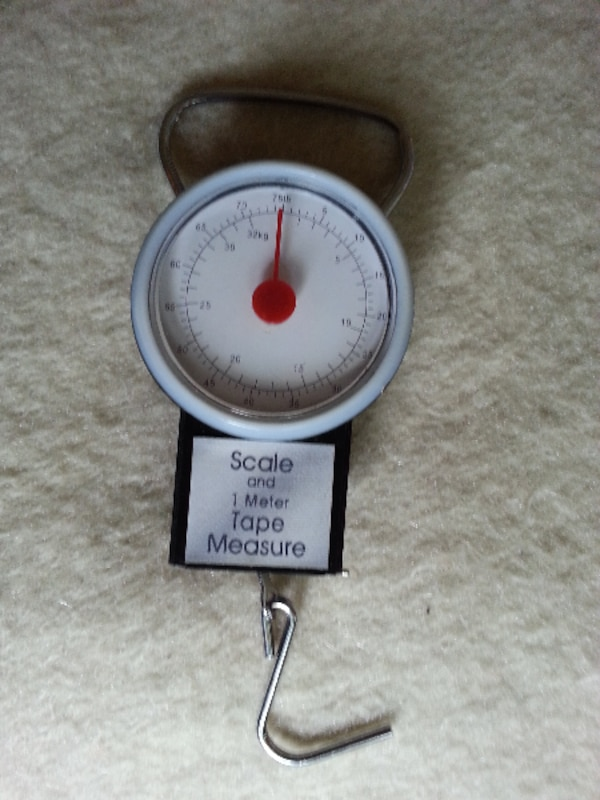 Travelling Wieght Scale