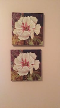 """Identical floral pictures —- changing room colour —- first $5 takes them both! They are 12"""" x 12"""" Aldergrove, V4W 0A4"""