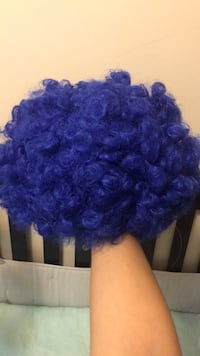 Blue wig Hasbrouck Heights, 07604