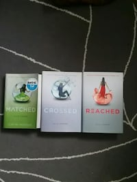 four assorted color book series